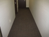 carpet5.jpg
